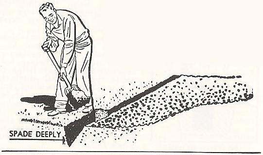 spade-deeply