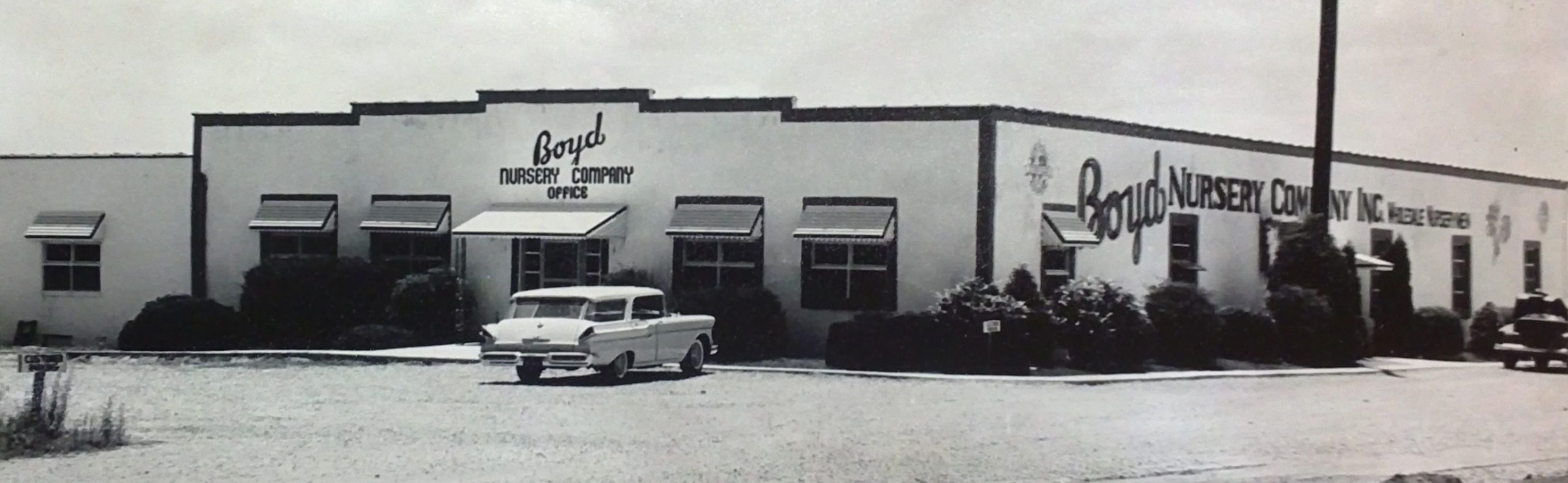 Boyd Nursery Company office in 1960s