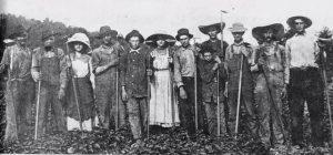 Jonathan Henry Harrison Boyd Forest Nursery and Seed Company 1909